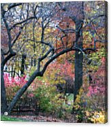 Watercolor Forest Acrylic Print