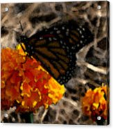 Watercolor Monarch Acrylic Print