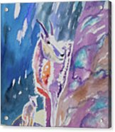 Watercolor - Mountain Goat With Young Acrylic Print