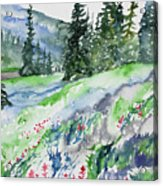 Watercolor - Mountain Pines And Indian Paintbrush Acrylic Print