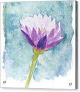 Watercolor Of Lotus Flower. Acrylic Print