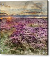 Watercolor Painting Of Beautiful Dawn Sunrise Landscape Image Of Heather On Higger Tor In Summer In  Acrylic Print