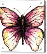 Watercolor Pink Butterfly Acrylic Print