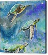 Watercolor - Sea Turtles Swimming Acrylic Print