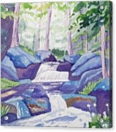 Watercolor - Summer Mountain Forest And Stream Acrylic Print