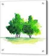 Watercolor Tree Acrylic Print
