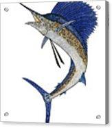 Watercolor Tribal Sailfish Acrylic Print