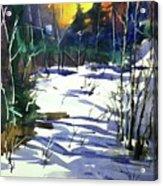 Watercolor3538 Acrylic Print