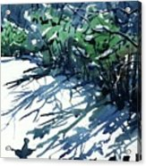 Watercolor4597 Acrylic Print
