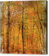 Watercolour Painting Of Vibrant Autumn Fall Forest Landscape Ima Acrylic Print