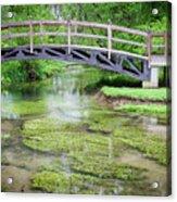 Watercress Acrylic Print