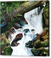 Waterfall 1 Acrylic Print
