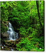 Waterfall And Rhododendron In Bloom Acrylic Print