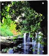 Waterfall And Rhododendron Acrylic Print