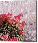 Waterfall Flowers Acrylic Print