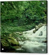 Waterfall In Hemlock Forest Acrylic Print
