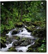 Waterfall Medley Acrylic Print