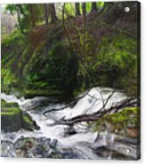 Waterfall Near Tallybont-on-usk Wales Acrylic Print
