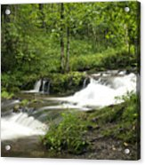Waterfall Oasis Acrylic Print