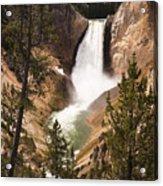 Waterfall Of Yellowstone Acrylic Print
