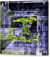 Waterfall Vortex Acrylic Print