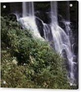 Waterfall Wildflowers Acrylic Print
