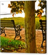 Waterfront Park Bench Acrylic Print by Lori Kesten