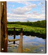 Watering Hole Acrylic Print
