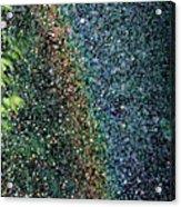 Watering Rainbows Acrylic Print