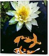 Waterlily And Koi Pond Acrylic Print