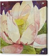 Waterlily Collage Acrylic Print