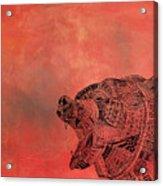 Watermelon Bear Acrylic Print