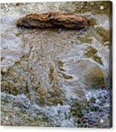 Watermovementstudy 1.1 Acrylic Print