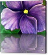 Watery African Violet Reflection Acrylic Print
