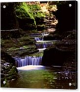 Watkins Glen Gorge In Summer Acrylic Print