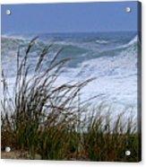 Wave And Sea Grass Acrylic Print