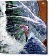 Waves Of Freedom Acrylic Print