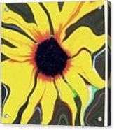 Waving Sunflower Acrylic Print
