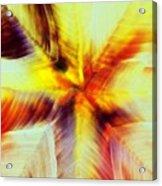Wax Abstract Acrylic Print