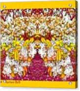 Waxleaf Privet Blooms In Autumn Tones Abstract Acrylic Print