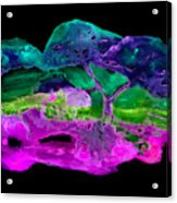 Wcs 4 C Acrylic Print