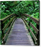 We All Have Bridges To Cross Acrylic Print