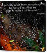 We  All Not Only  Could Know Everything... Acrylic Print
