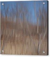 Weary Reflections Acrylic Print