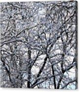 Weather Patterns Acrylic Print