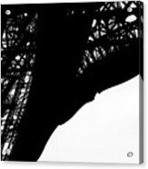 Web Of Steel Acrylic Print
