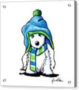 Wee Winter Westie Acrylic Print