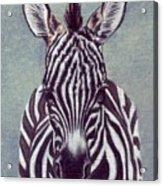 Wee Zeeb Acrylic Print