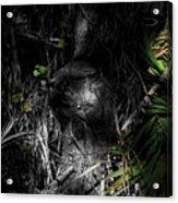 Weedon Number 2 Acrylic Print