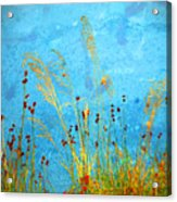 Weeds And Water Acrylic Print